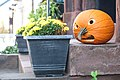 Baltimore Pumpkin (49071657721).jpg
