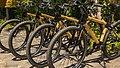 Bamboo Bicycle Tour bikes.jpg