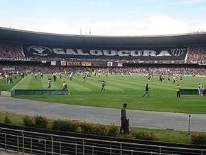 Clássico Mineiro - Atlético fans in Mineirão stadium.