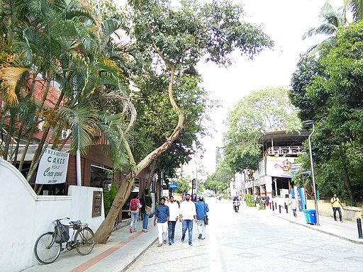 Bangalore Church street trees 3
