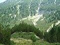 Bansko, Bulgaria - panoramio (46).jpg