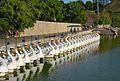 Barquetes cigne del parc de Capçalera, València.JPG