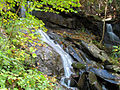 Bear Creek Falls (6186583064).jpg