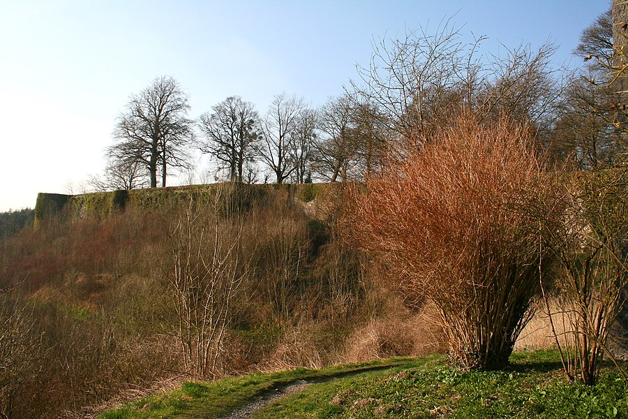 Beaumont, Belgium, the city walls (XIIth century).