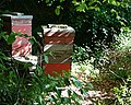 Beehives - geograph.org.uk - 183238.jpg