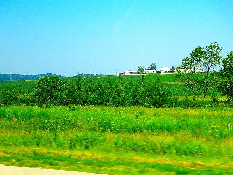 File:Belmont Prairie State Natural Area - panoramio.jpg