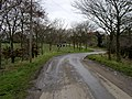 Bend in the road - geograph.org.uk - 126123.jpg