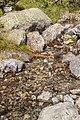 Bergtocht van S-charl naar Alp Sesvenna. 10-09-2019. (actm.) 28.jpg