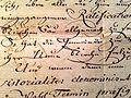 Berufungsurkunde Pfarrer Maximilian Friedrich Scheibler von 1789.jpg