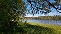 Bestorpasjön beläget intill Åminne Naturreservat.jpg
