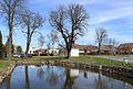 Bezděkov (RO), common pond.jpg