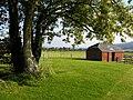 Bignor Roman Villa - geograph.org.uk - 1004493.jpg