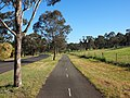 Bike path beside Longmore Crescent Wanniassa October 2014.jpg
