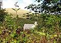 Billy Winspit's cottage - Winspit - geograph.org.uk - 1499749.jpg