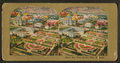 Bird's view, World's Fair, St. Louis, from Robert N. Dennis collection of stereoscopic views 2.png