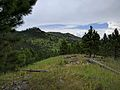 Black Hills looking toward Custer State Park 02.jpg