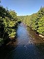 Blackwater Falls State Park WV 17.jpg