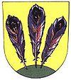 Huy hiệu của Blížkovice