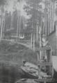 Blockhaus Nipigon Lodge.png