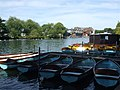Boats for hire, Windsor - geograph.org.uk - 908787.jpg