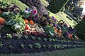 Botanic Garden - Cluj-Napoca (4114990059).jpg