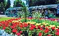 Botanic Gardens Tour.jpg