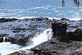 Botanical Gardens Kauai, Hawaii - panoramio (15).jpg