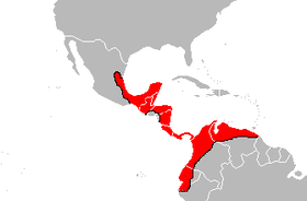 Bothrops asper Area.PNG