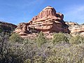 Boynton Canyon Trail, Sedona, Arizona - panoramio (35).jpg
