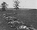 Brady, Mathew B. - Aufgebart für das Begräbnis bei Antietam (Zeno Fotografie).jpg