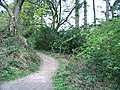 Bridle path adjacent to Craig-y-nos Country Park - geograph.org.uk - 421976.jpg