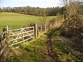 Bridleway from Brooks Wood - geograph.org.uk - 1765983.jpg