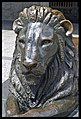 Brisbane City Hall Lion Statue-1and (4277666667).jpg