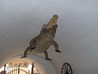 Brnenský drak