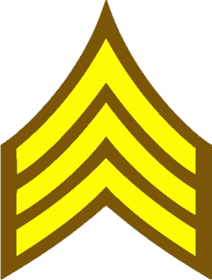 Shelby County Sheriff's Office (Tennessee) - Image: Brown and Gold Sergeant Stripes