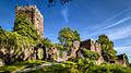 Burg Wildenberg (14411168064).jpg