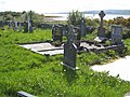 Burial ground on the shores of Lough Allen - geograph.org.uk - 796583.jpg