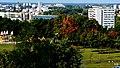 Bydgoszcz widok miasta z mego mieszkania - panoramio (7).jpg