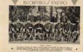 CAMPO DE MAYO 1907.png