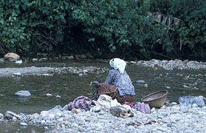 English: Woman washing clothes in the river Ne...