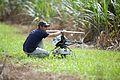 CSIRO ScienceImage 2341 Preparing the ResQu helicopter.jpg