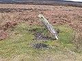 Cairn on Esclusham Mountain - geograph.org.uk - 1227799.jpg
