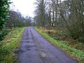 Caldwell Lodge drive - geograph.org.uk - 1092311.jpg