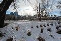 Calgary winter approaches (10764781766).jpg