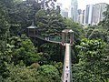 Canopy Walk at KL Forest Eco Park 2.jpg