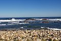 Cape of Good Hope 2014 4.jpg