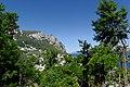 Capri BW 2013-05-14 09-41-56.jpg