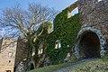 Castle Ruins 2 (214159005).jpeg