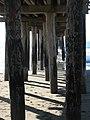 Cayucous Pier - panoramio.jpg
