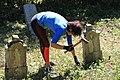 Cer-Voničko groblje (Krivaja) 18. 08. 2019 255.jpg